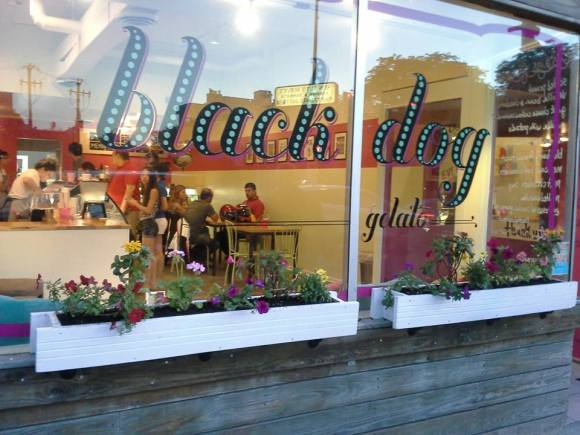 Black Dog Gelato's Store - Photo Courtesy of Black Dog Gelato (Chicago)